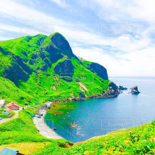 礼文島の写真・画像素材[2209028]