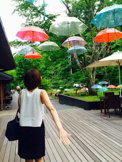 傘の写真・画像素材[557524]