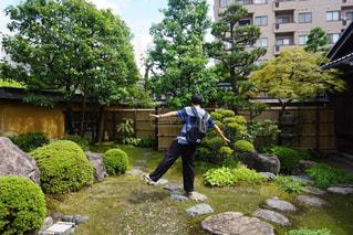 庭の写真・画像素材[1181497]