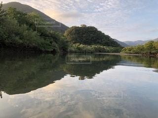 木々 に囲まれた水の体の写真・画像素材[1232667]