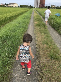 草の中に立っている小さな男の子の写真・画像素材[1179167]
