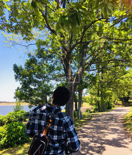 男性,公園,木,屋外,緑,後ろ姿,影,人物,背中,人,昼間,木道