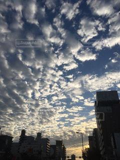 風景,空,屋外,雲,夕暮れ,夕方,秋空,陽ざし
