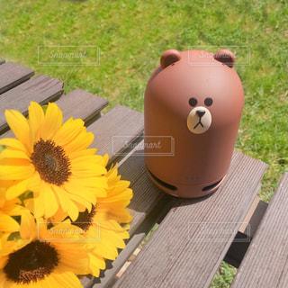 黄色い花の上に座って花の花瓶の写真・画像素材[1318711]