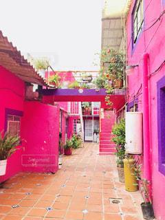 建物,屋外,海外,ピンク,鮮やか,家,外国,旅行,旅,夏休み,メキシコ,塗装