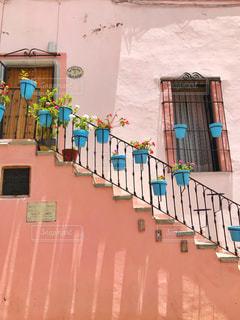 花,海外,ピンク,鮮やか,家,外国,旅行,旅,夏休み,メキシコ,pink,塗装
