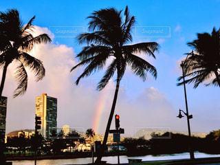 ハワイ オアフ島 ホノルルで虹が見えました。 - No.1197250