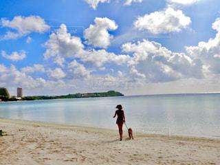 グアムのビーチの写真・画像素材[1410909]