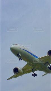 青い空を飛ぶ大型旅客機の写真・画像素材[1219546]