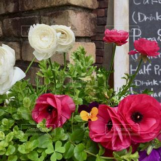 テーブルの上の花の花瓶の写真・画像素材[1376913]