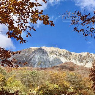 背景の山と木の写真・画像素材[1598505]