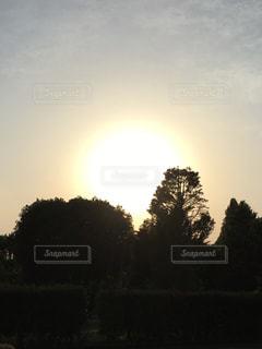 太陽,夕暮れ,北公園