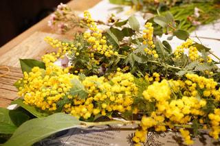 自然,花,植物,フラワーアレンジメント,黄色,黄色い花,ミモザ,イエロー,きいろ,ワークショップ,yellow,スワッグ,スワッグのワークショップ,スワッグのWS
