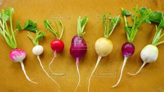 食べ物,屋内,カラフル,鮮やか,まな板,野菜,食品,台所,新鮮,大根,色,色彩,食材,根,フレッシュ,生野菜,ベジタブル,ダイコン,栄養,並べる,二十日大根,ハツカダイコン,とれたて野菜,並べて