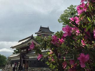 松本城曇天の巻の写真・画像素材[1259696]