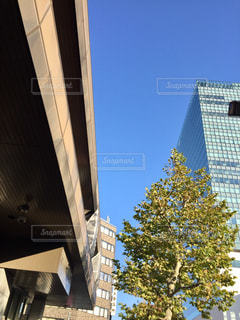 ビルと青空の写真・画像素材[1649698]
