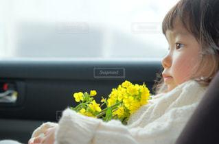 春の写真・画像素材[1417632]