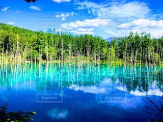 青い池に映る青空。の写真・画像素材[1862253]