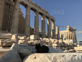 パルテノン神殿の守りネコの写真・画像素材[1263584]
