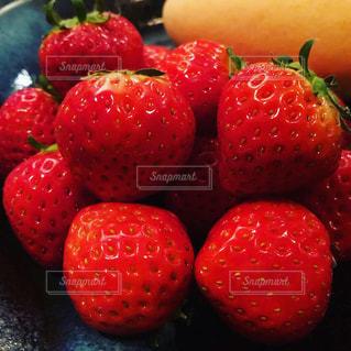 食べ物,果物,ベリー,複数,イチゴ