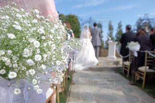 お花から覗くウエディングの写真・画像素材[2028769]