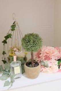 テーブルの上の花瓶の写真・画像素材[2771310]