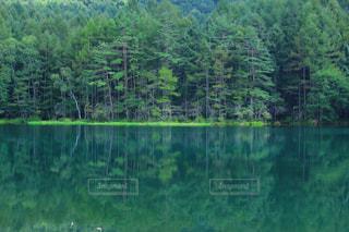 神の住まう池、御射鹿池の写真・画像素材[1217392]
