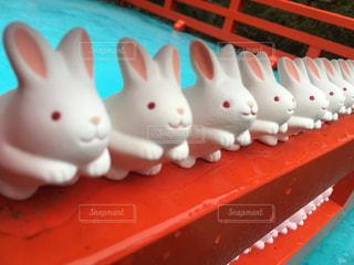 うさぎのための岡崎神社の写真・画像素材[1201170]