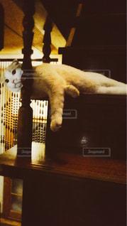 階段でひと休みの写真・画像素材[1214495]