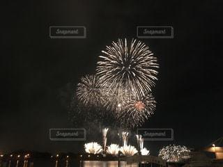 観光地・函館 花火の写真・画像素材[1225873]
