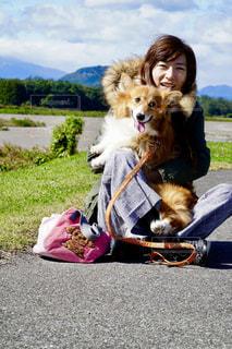草の中に座っている犬の写真・画像素材[1190238]