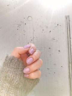 ピンクピンクピンクの写真・画像素材[1190940]