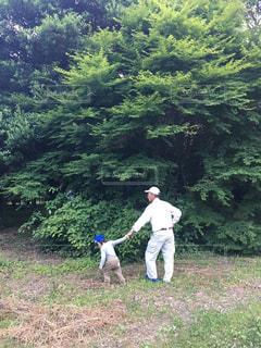 2人,歩く,散歩,樹木,祖父,孫,トレーニング