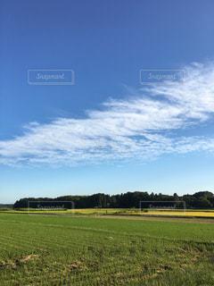 雲,田んぼ,秋空,稲刈り,9月