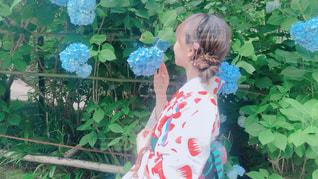 夏,晴れ,後ろ姿,散歩,女,紫陽花,着物,写真,鎌倉,被写体,和柄,連休,いい天気,まとめ髪,他撮り