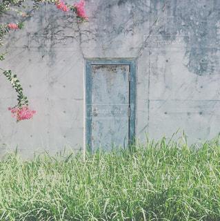 knock knock knockの写真・画像素材[1232668]
