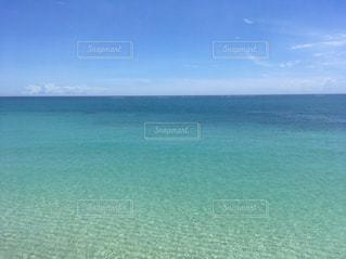 水の体の写真・画像素材[1313571]