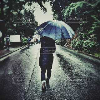 男性,自然,雨,傘,屋外,森,歩く,男,樹木,人物,道,人,レインコート,レインブーツ,vsco