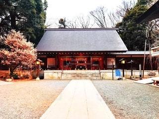 神社の写真・画像素材[1217065]
