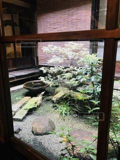 クローズ アップ庭園のの写真・画像素材[1666435]