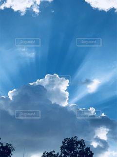 天からの光の写真・画像素材[1342110]