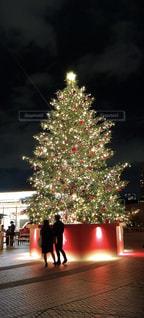 恵比寿ガーデンプレイスのクリスマスツリーの写真・画像素材[1680406]