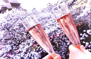 飲み物,春,桜,花見,人物,イベント,グラス,乾杯,ドリンク,パーティー,手元