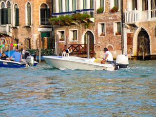 ヴェネツィアのわんちゃんの写真・画像素材[1217327]