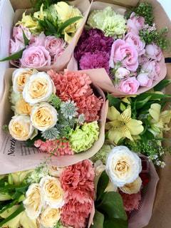 ピンクの花のグループの写真・画像素材[1833333]