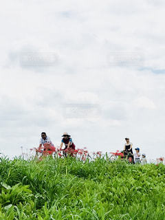 家族,風景,空,秋,屋外,親子,散歩,草,人物,日本,彼岸花,サイクリング,埼玉,秋空
