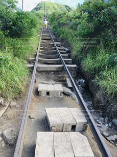 泥道を走る列車の写真・画像素材[2211333]