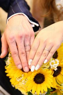 黄色い花を持っている手の写真・画像素材[1252012]