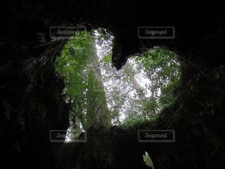 恋愛成就パワースポットの写真・画像素材[1203469]