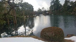 冬の兼六園の写真・画像素材[1203473]
